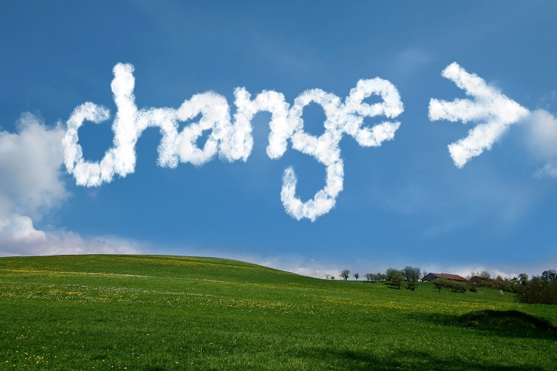 Change management and executive consultancy for small business UK