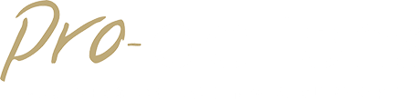 Pro-actions Business Coaching & Support
